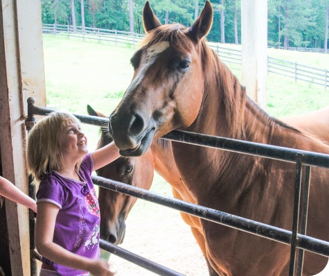 Lutheranch summer camper with horse